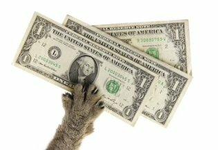 Деньги под залог доли в квартире красноярск