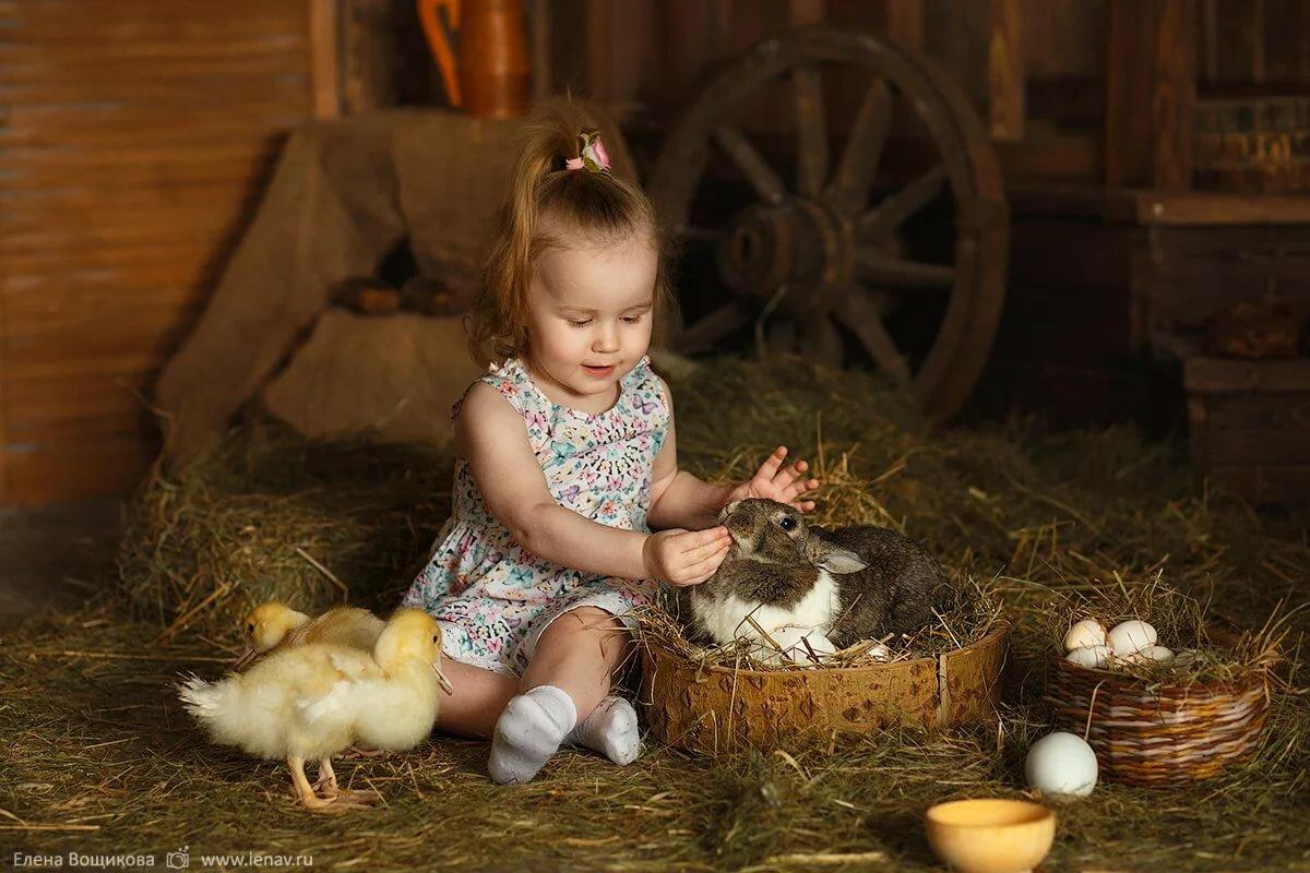фотостудии с кроликами и утятами лука
