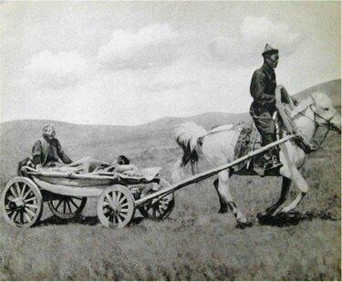 монгольская повозка