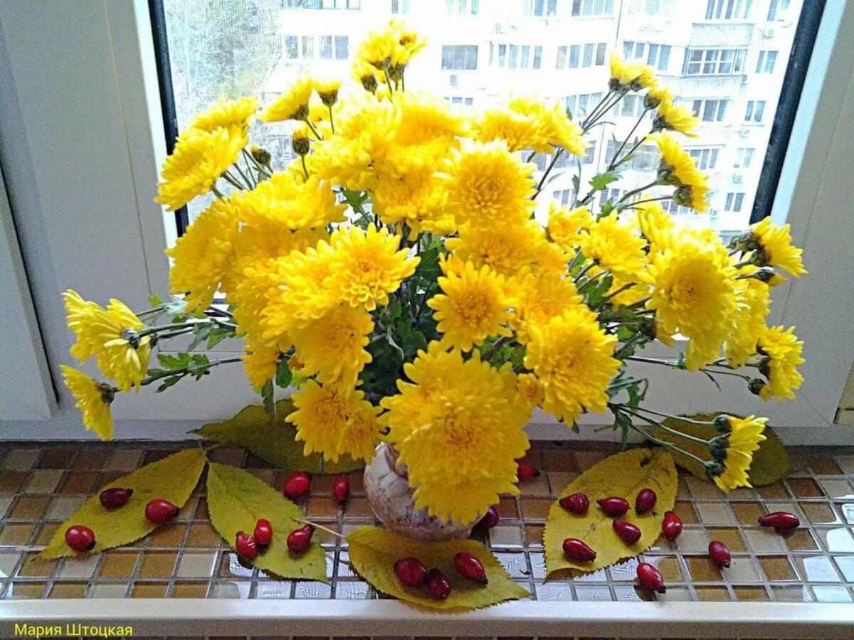 созревания открытки с осенними цветами с добрым утром окраинах славянска силы