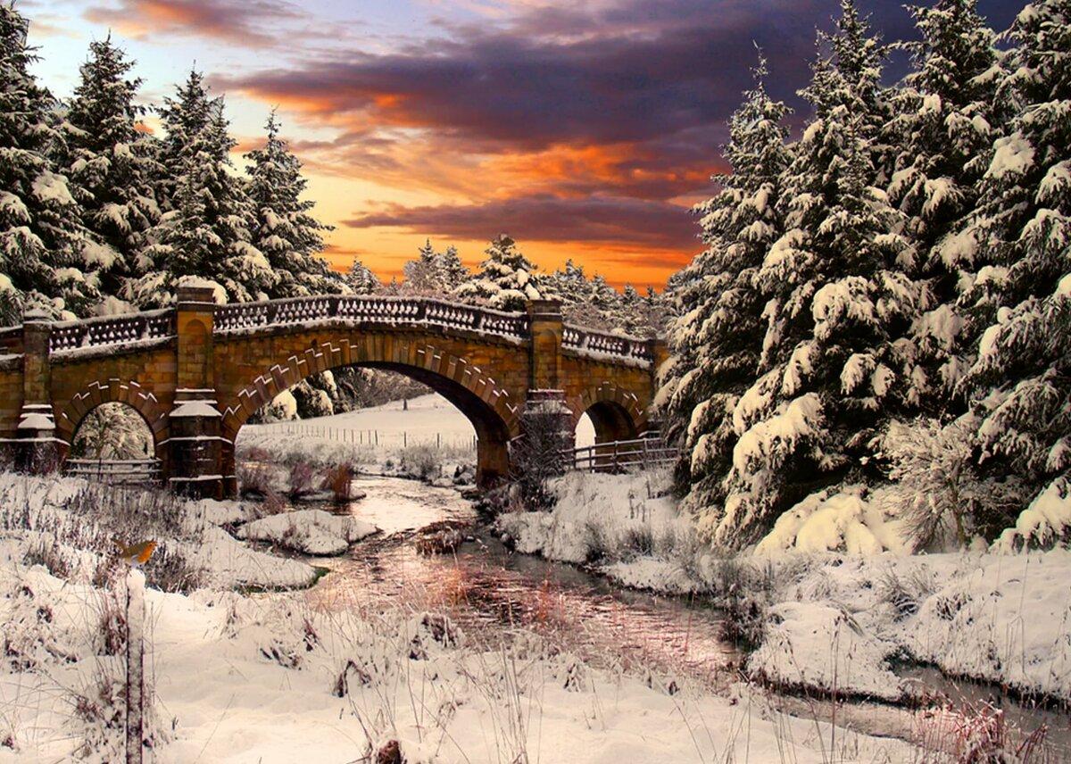 что зимняя мостовая картинки калининграде местных жителей