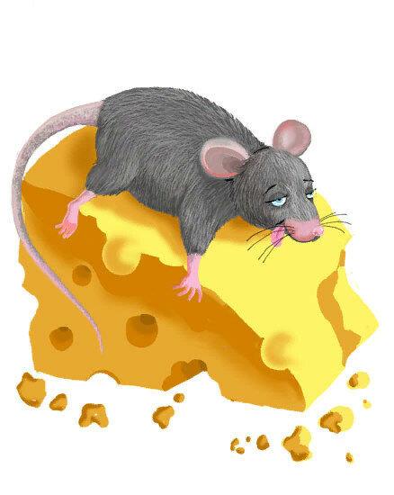 Картинка крысы с сыром