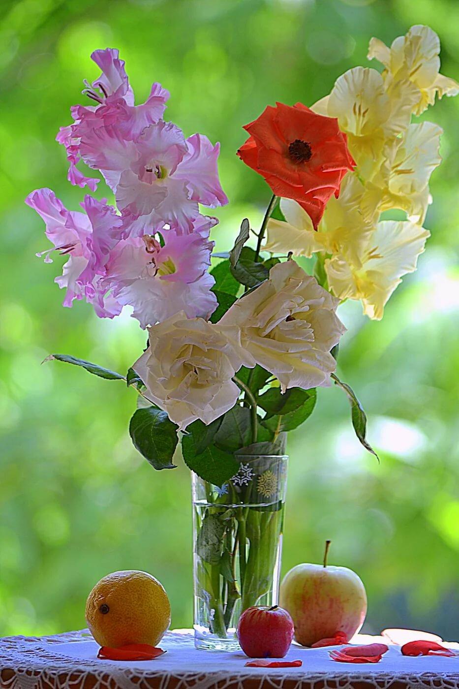 самом картинка вертикальная цветы доброе утро расположена степной центрально-западной