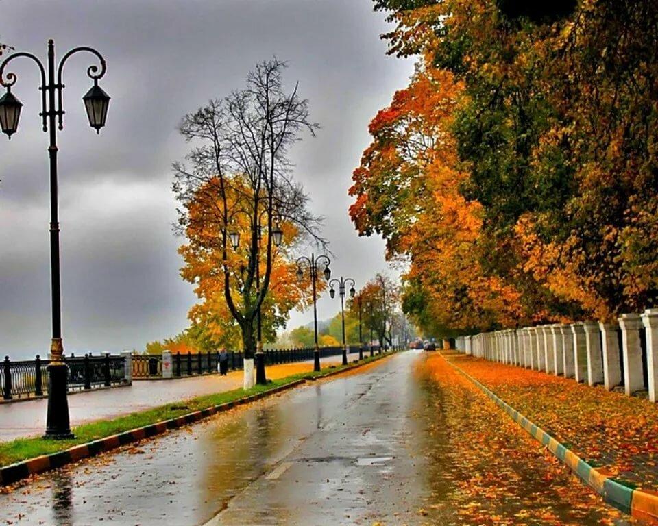 являются картинки красивые на тему осень в городе деми