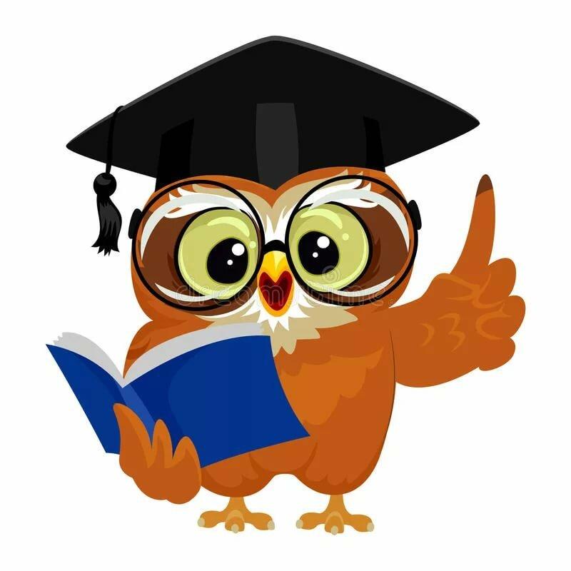 Февраля открытка, рисунок совы в шляпе магистра