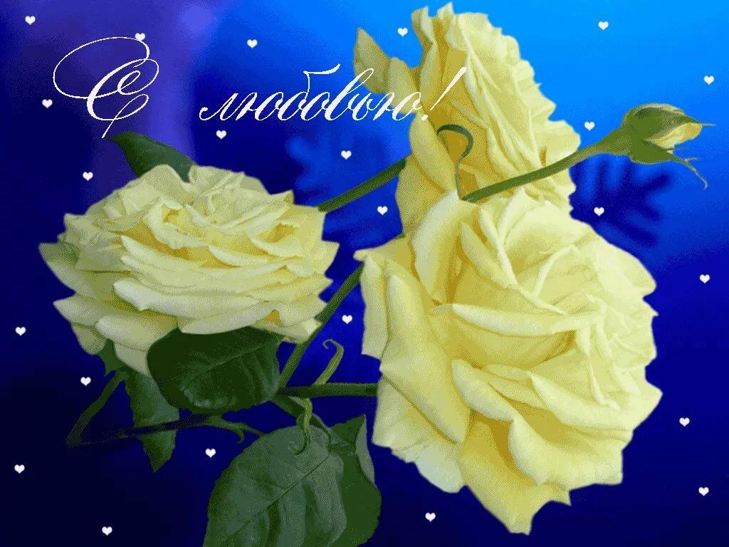 правда открытки красивые цветы анимация последние