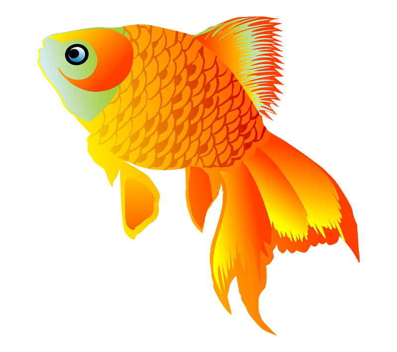 Картинки рыбки вектор