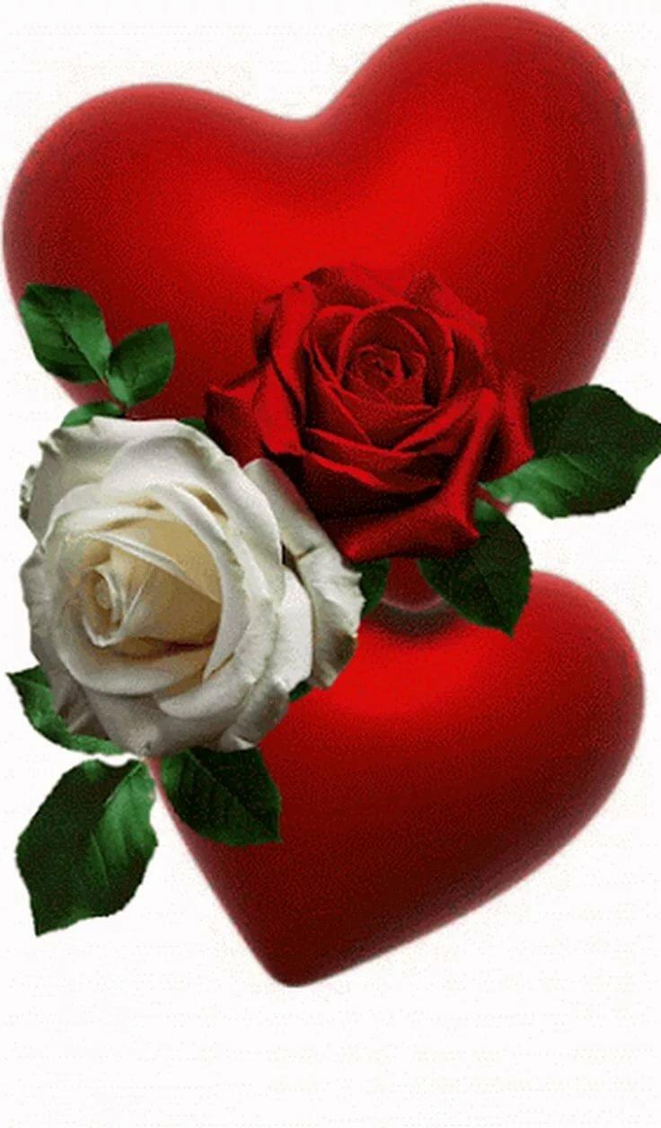 имя выбрали картинки с розами и сердечками гифки легенда