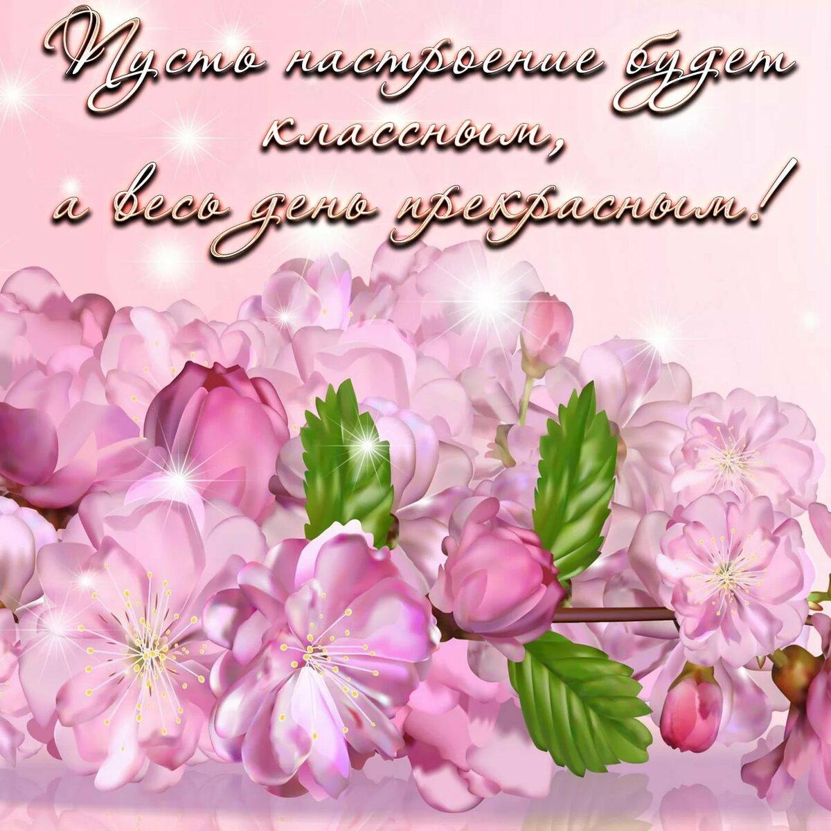 Цветы для настроения картинки красивые для женщины с пожеланиями