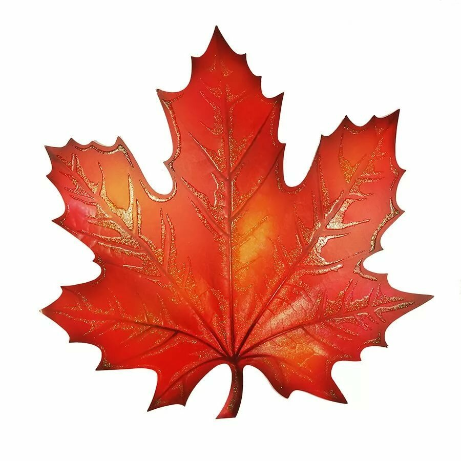 Картинки осенние листья для детей нарисованные цветные