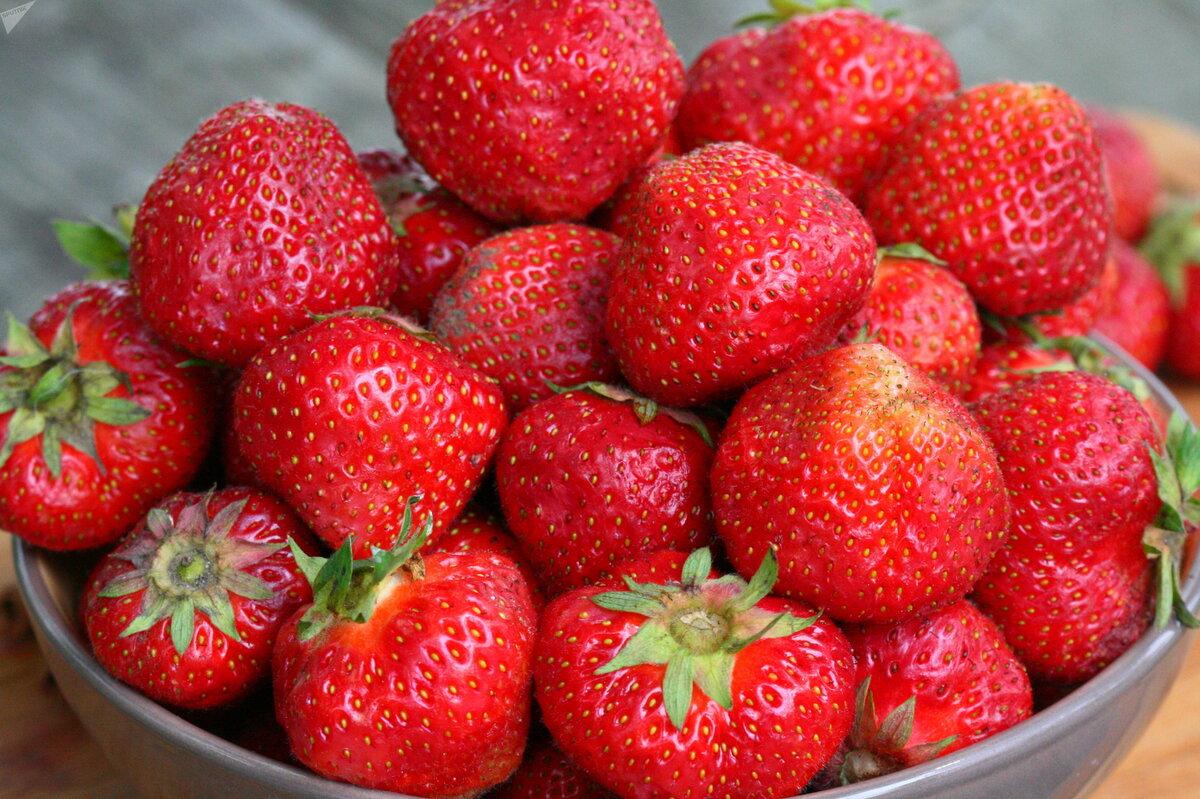 Домашняя ягодница клубника и земляника в Петропавловске-Камчатском