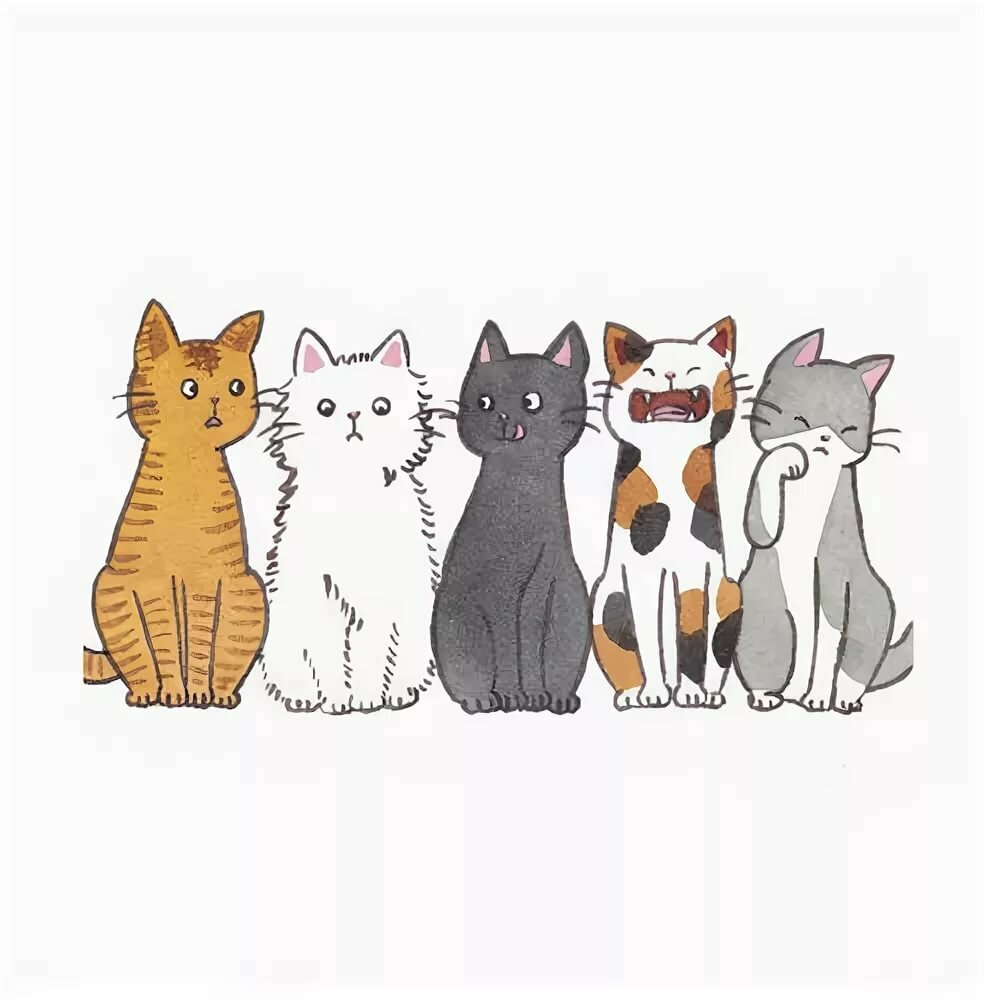 нас картинки коты в стиле тумблер это