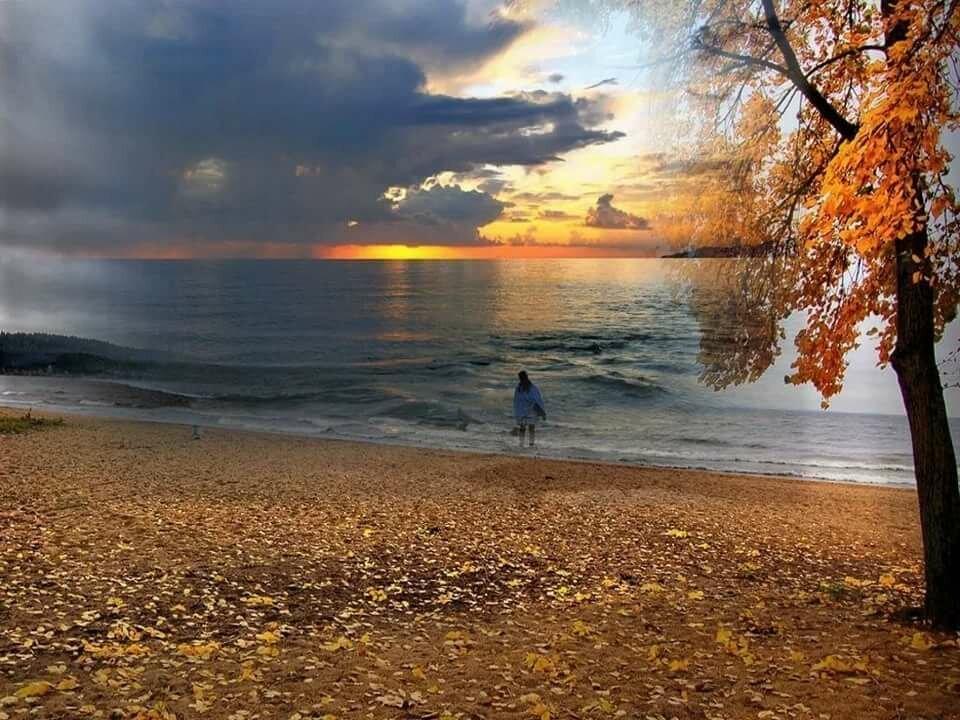 очень открытки осень и море этом сайте вас