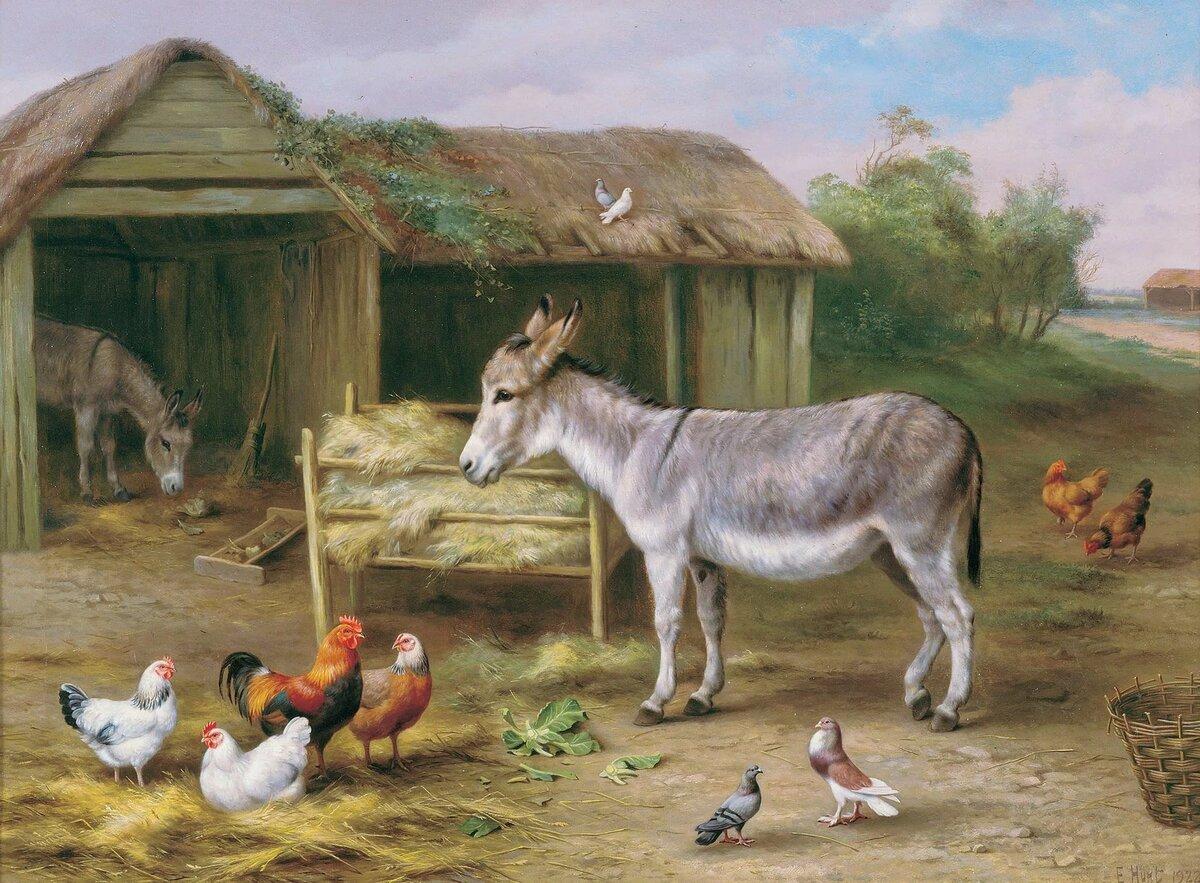 внимание картинка скотный двор домашние животные яркие подложки