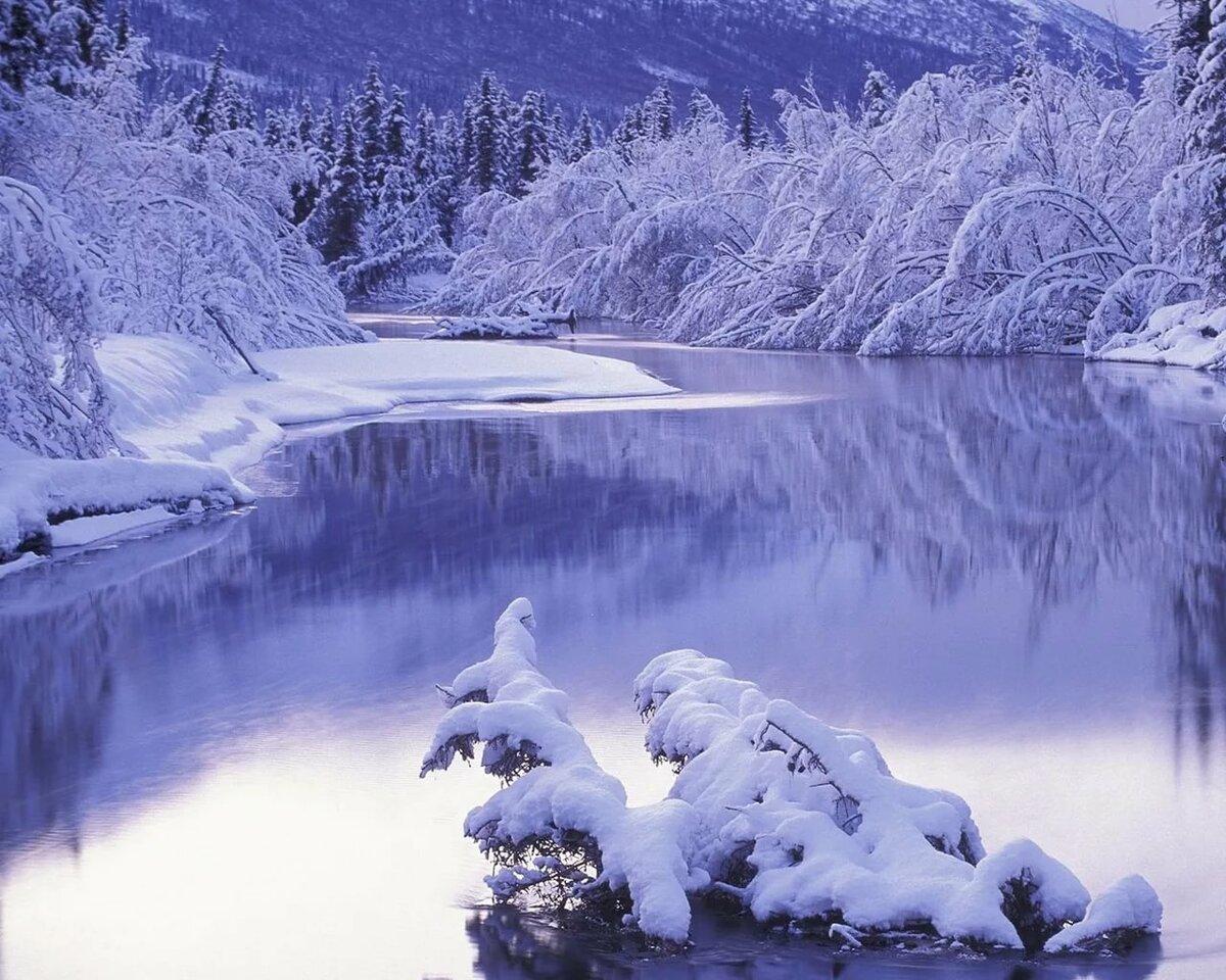 запретил снежная красота в картинках виде желтухи, потемнения