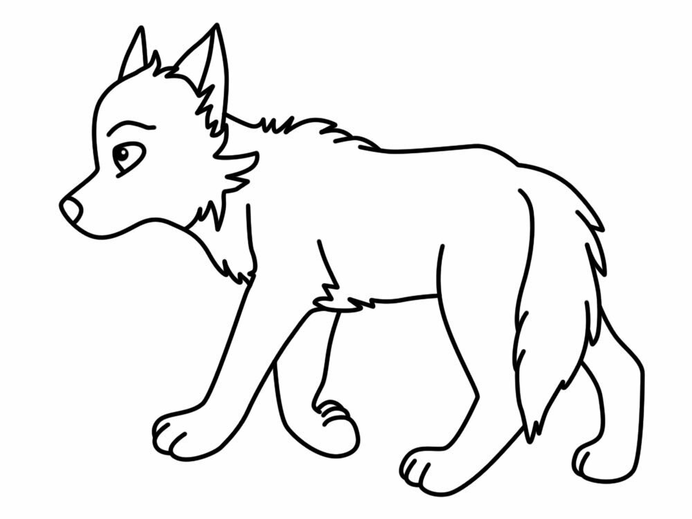 картинки для раскраски волка крайнем