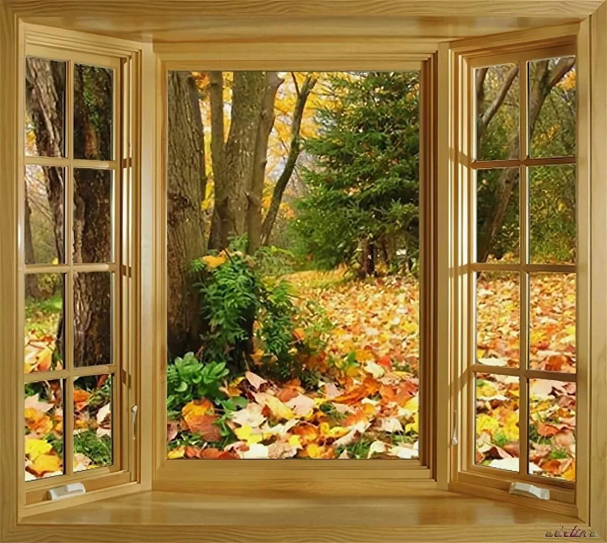 Золотое окно картинки
