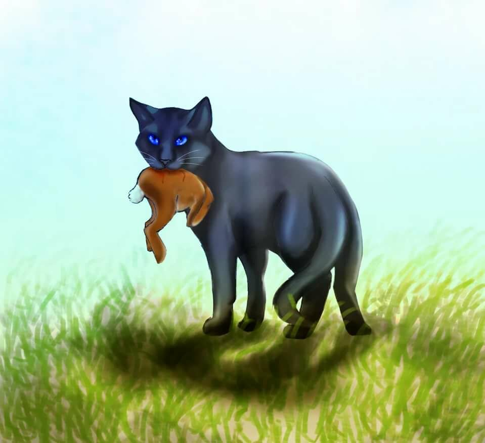 найти другое открытки коты воители россии времена