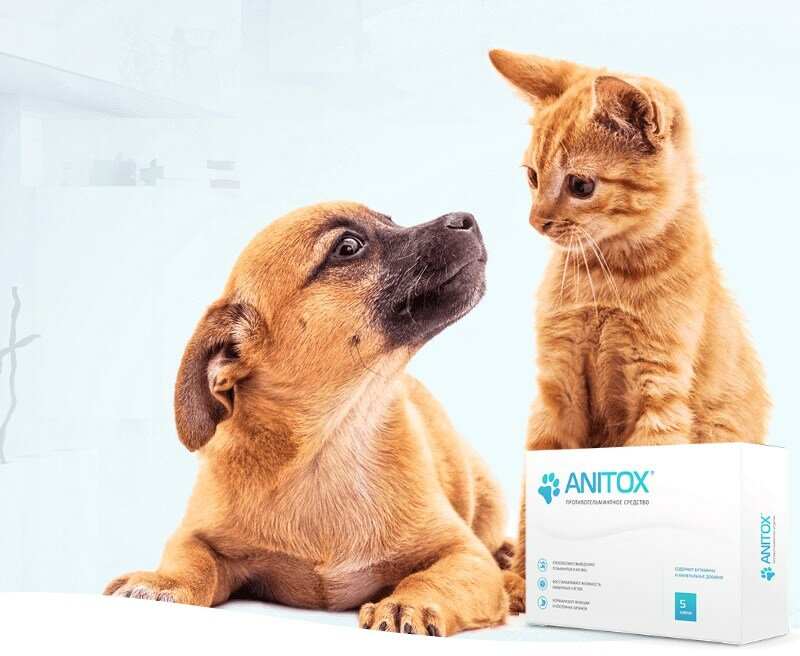 Anitox All от паразитов для животных в Томари