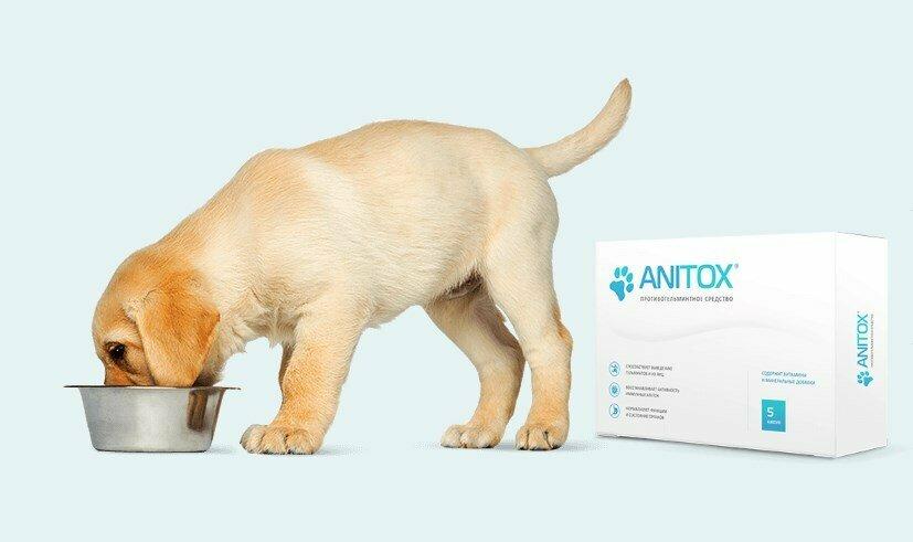 Anitox All от паразитов для животных в Находке