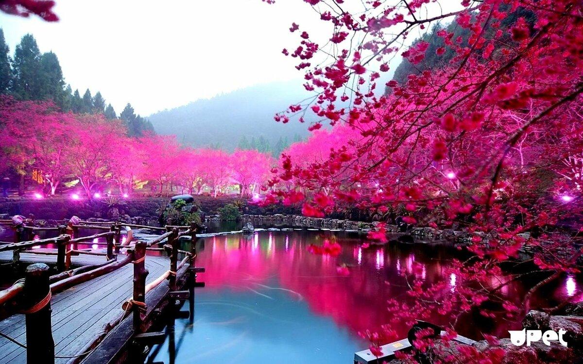 Самые самые красивые картинки в мире, мая