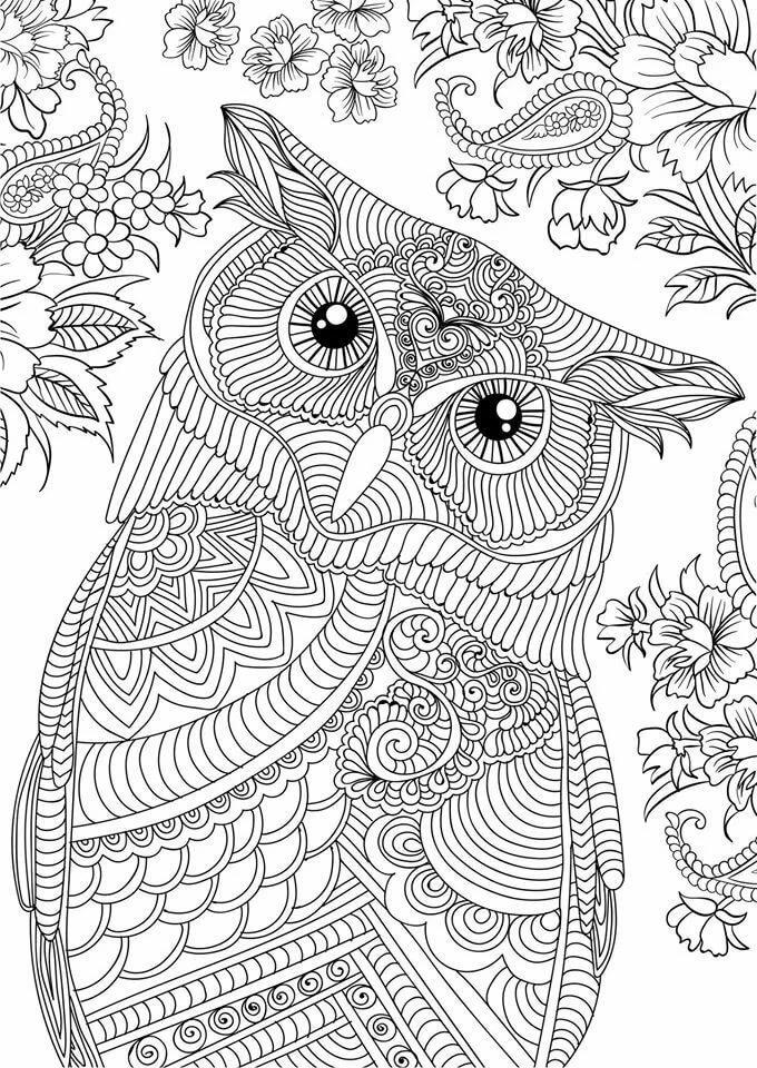 Арт-терапия птицы картинки