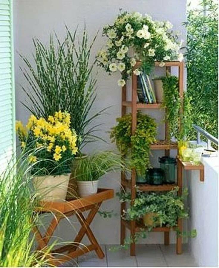 Красиво на балконе разместить цветы фото внешнего вида