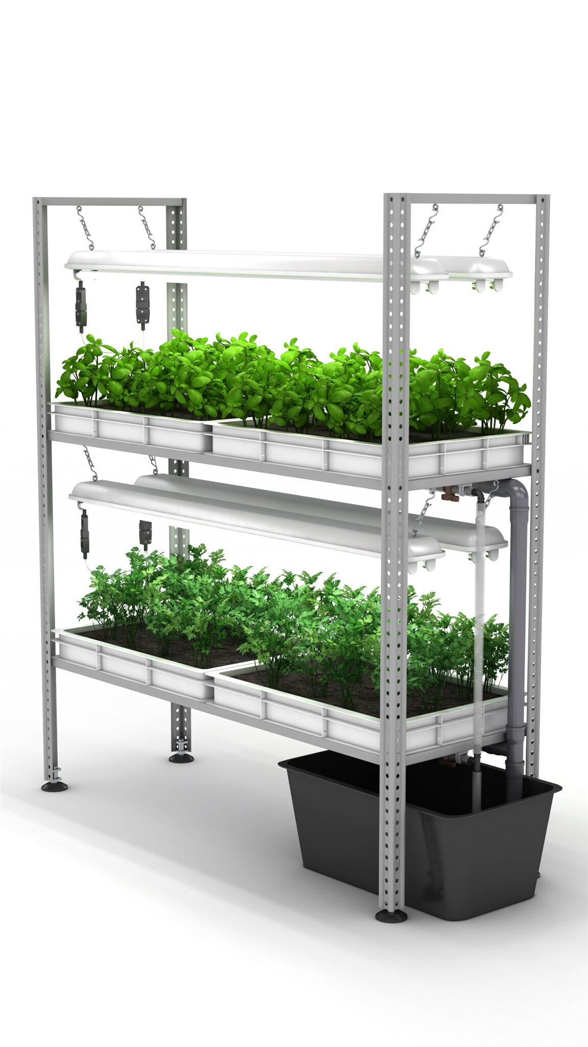 оборудование для выращивания зелени в домашних условиях