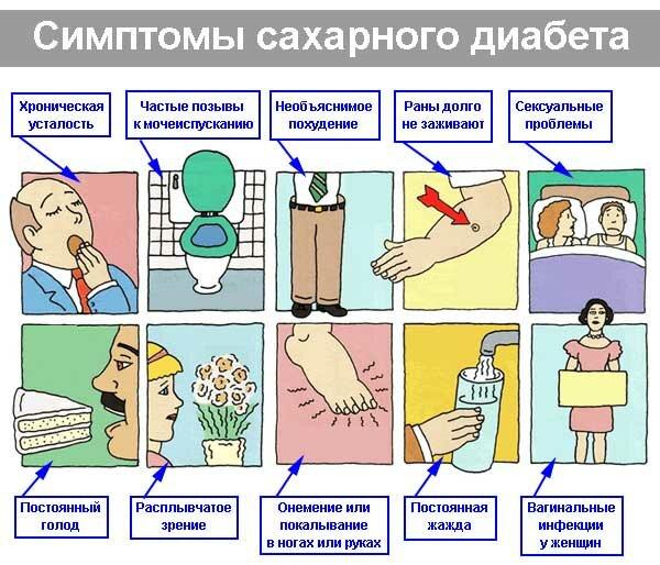 эффективное похудение женщин первые признаки фото