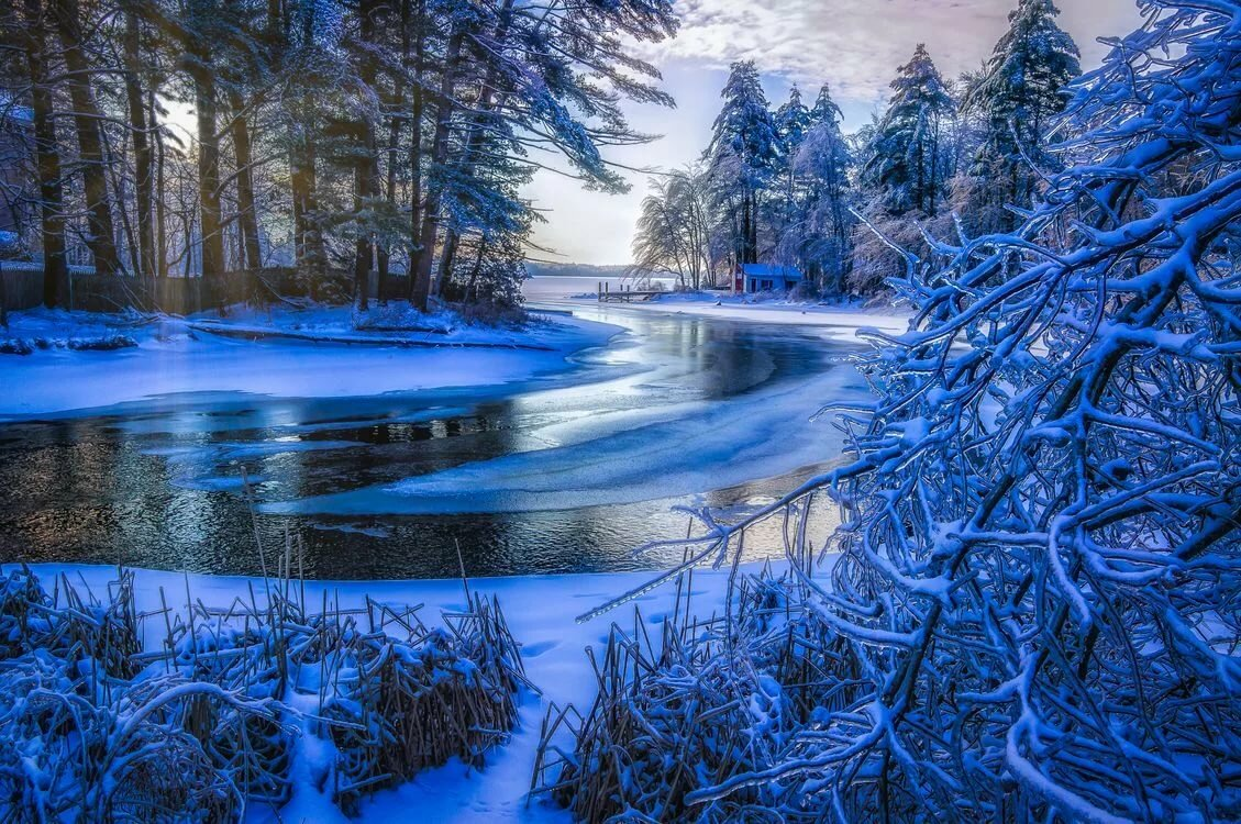 лаваш живые картинки зимняя природа остаются моделями