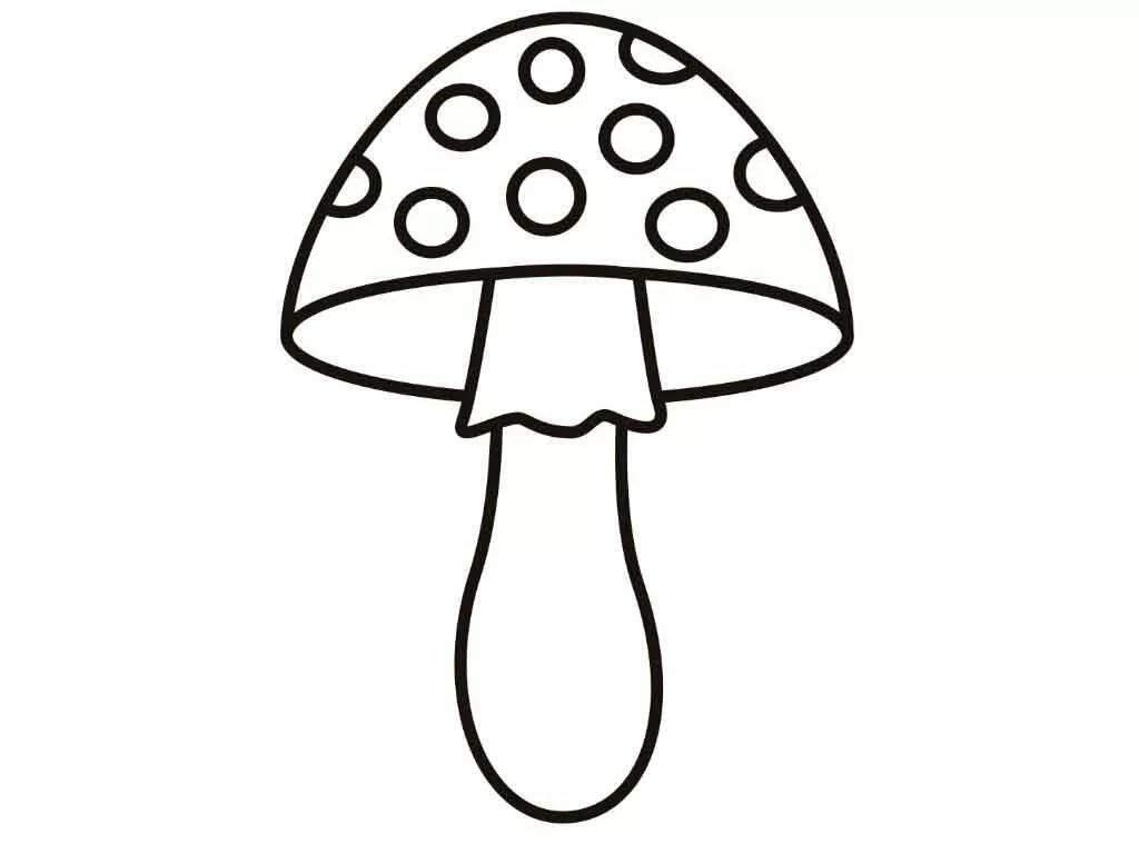 вид грибы фото для вырезания приобретает разнообразные
