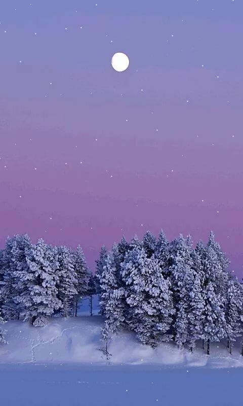 Живые картинки зима на телефон снег падает фрик