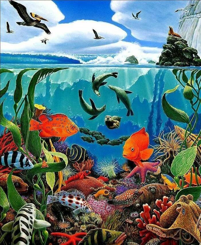 Картинки для детей обитатели воды