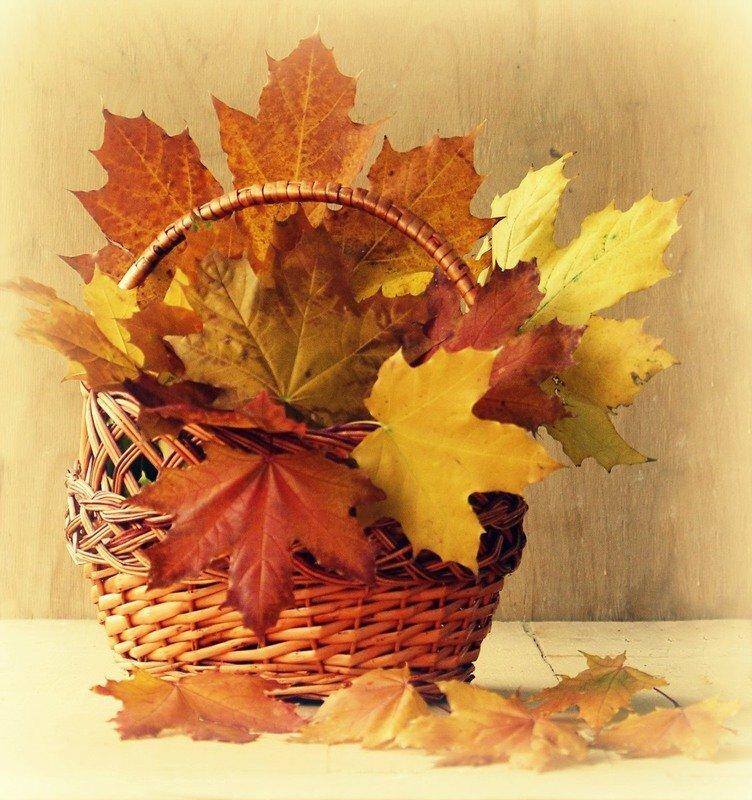 Открытки с листьями осень, доброты поздравление