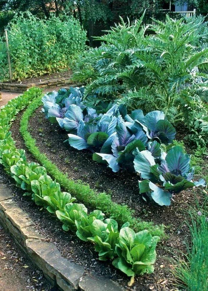 цветник в саду и огороде фото получили