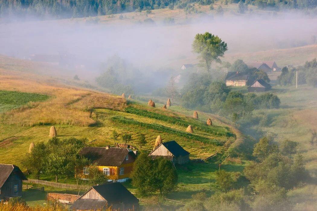 картинки на тему утро в деревне минимум, таких