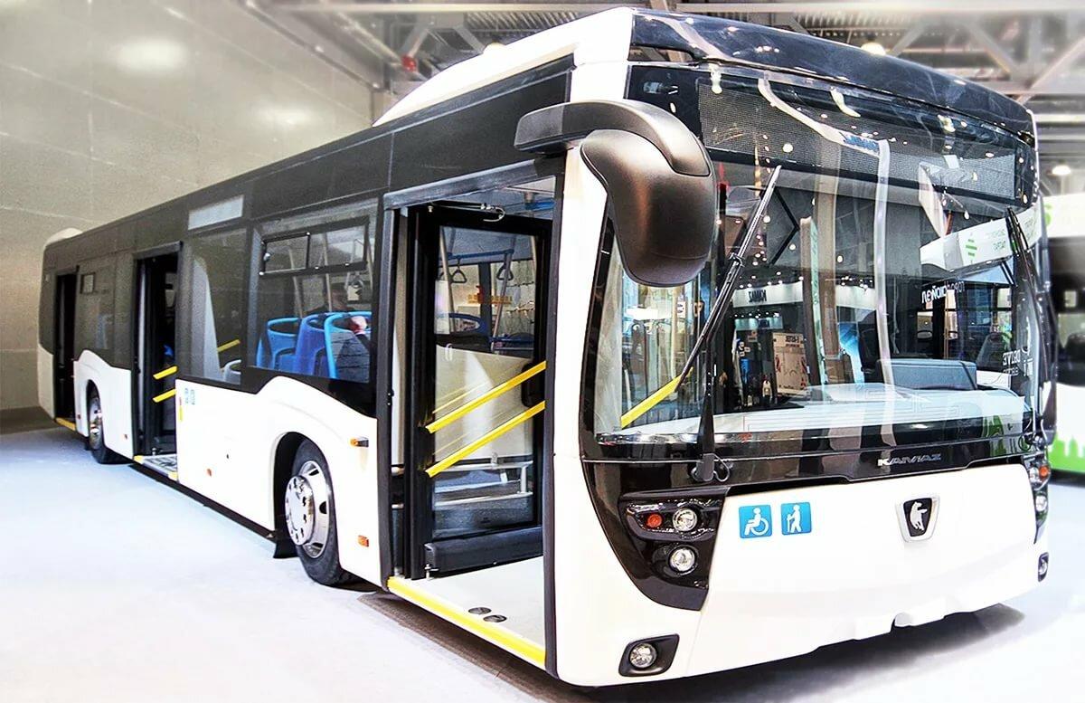картинки камазов автобусов только