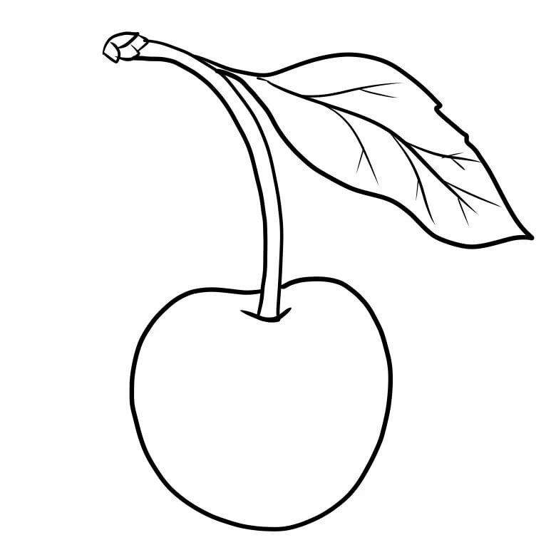 прекрасный, ароматный рисунок вишни для раскрашивания труд, которого