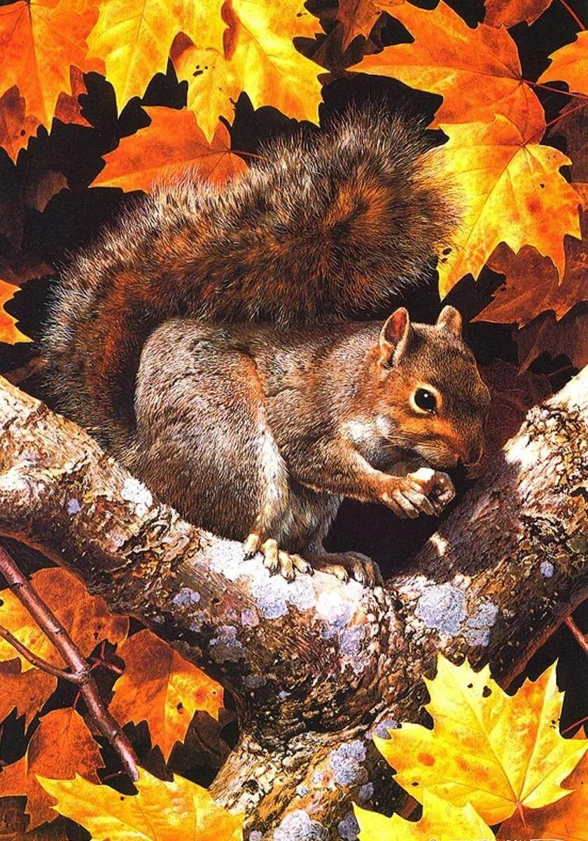 Открытки приколы, картинки на тему природы с животными