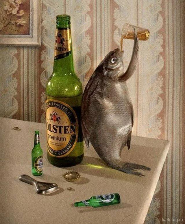 Смешные картинки пьют водку