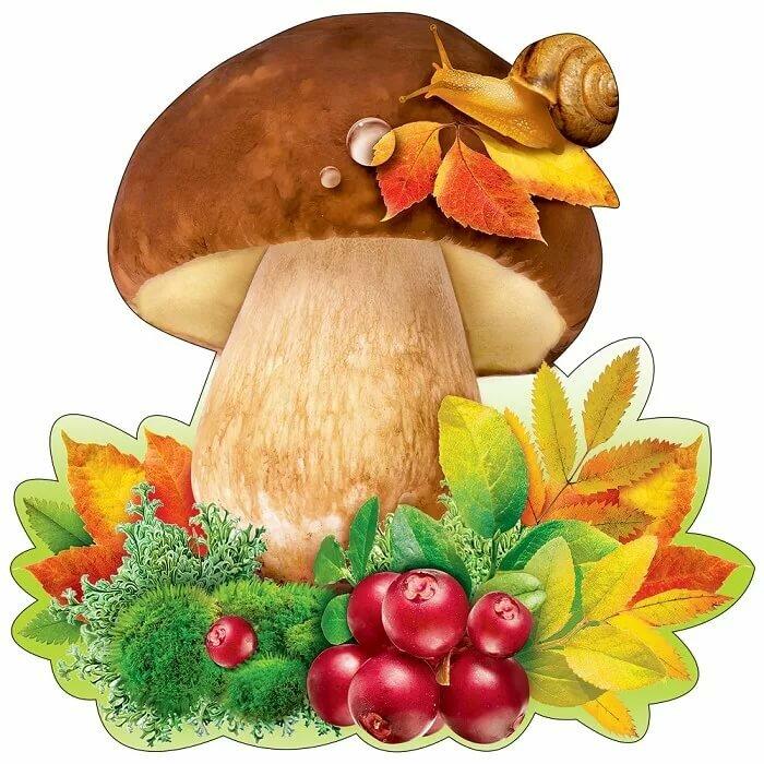Открытка днем, праздничные открытки с грибами