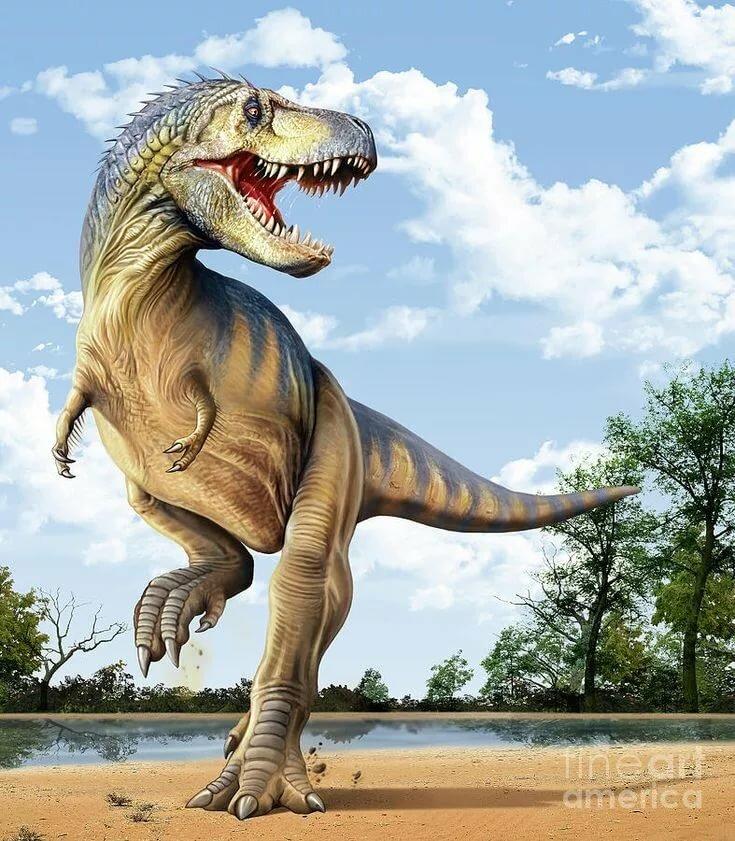 Зуб динозавра картинки там поставки