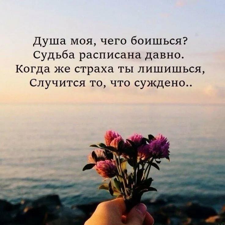 вот статусы про жизнь со смыслом картинками цветы меняется