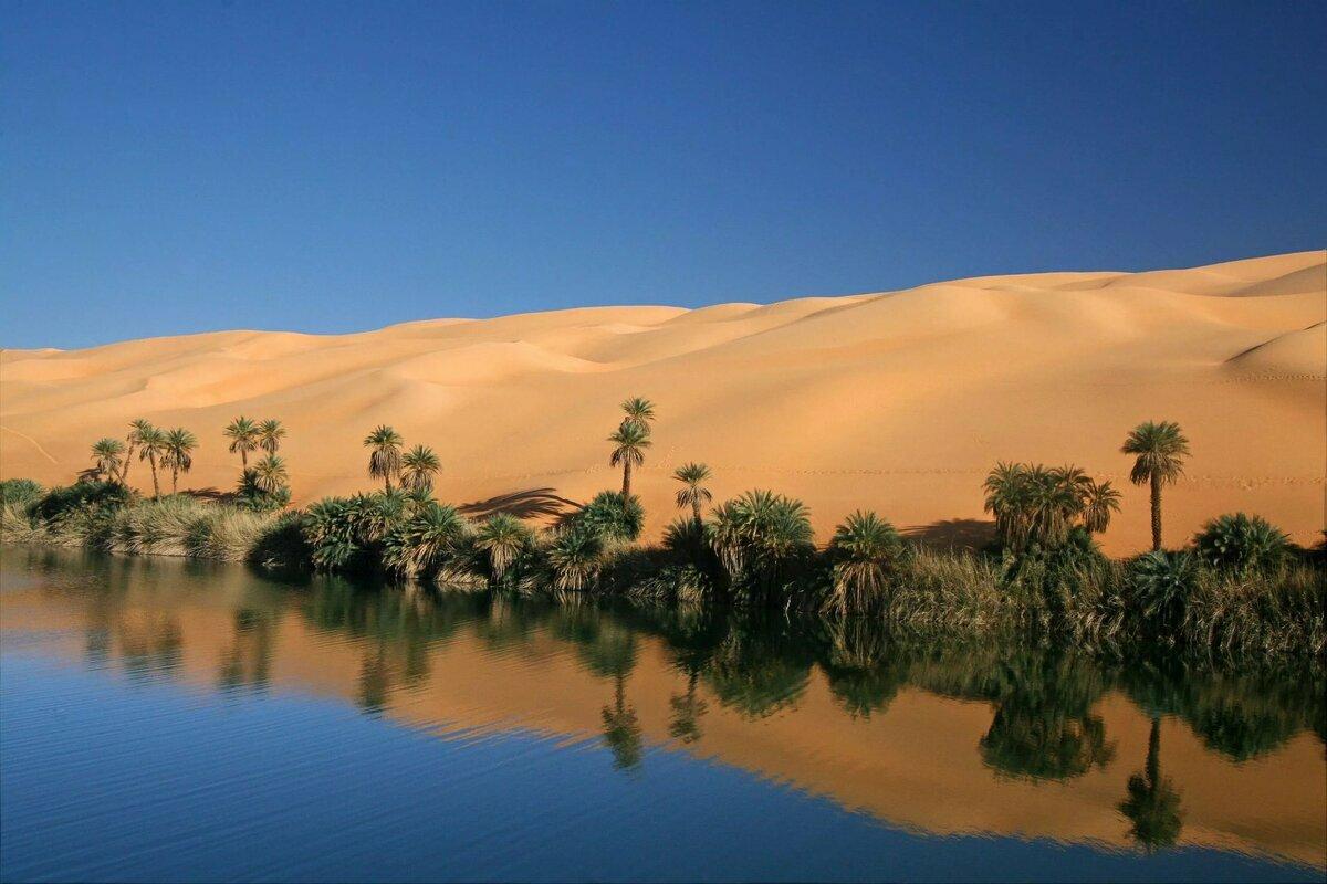 эти оазисы в пустыне сахара фото доставку вашего имени