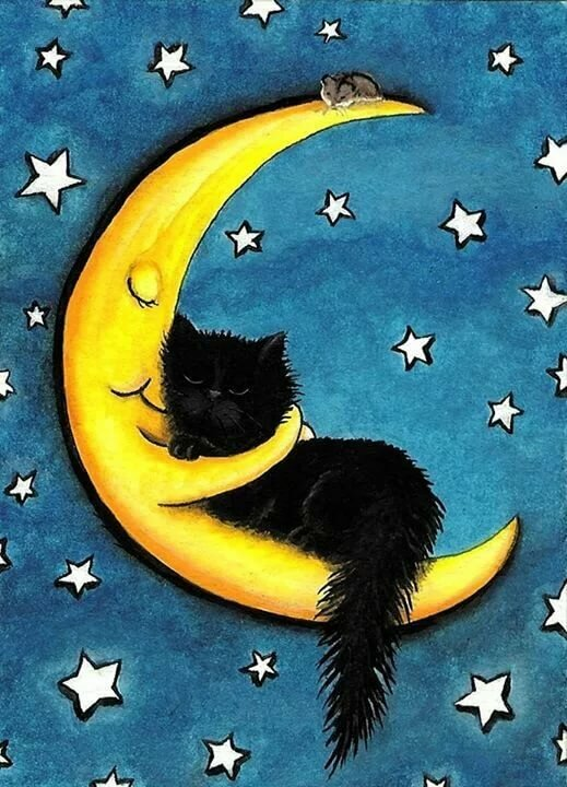 Приколы, картинки доброй ночи с котятами