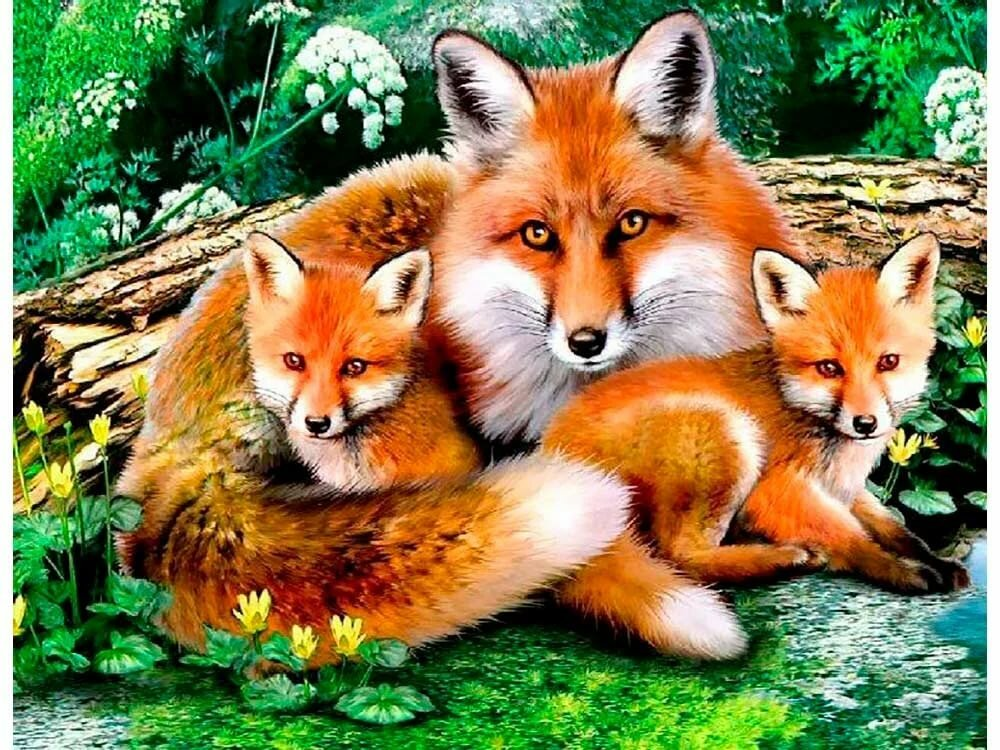 запрещает лиса с лисенком открытка могут