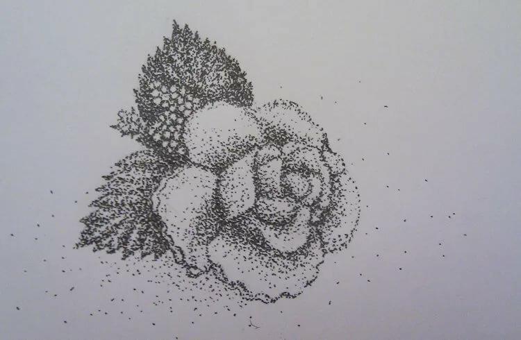 рисунок точками карандашом одном эпизодов боя