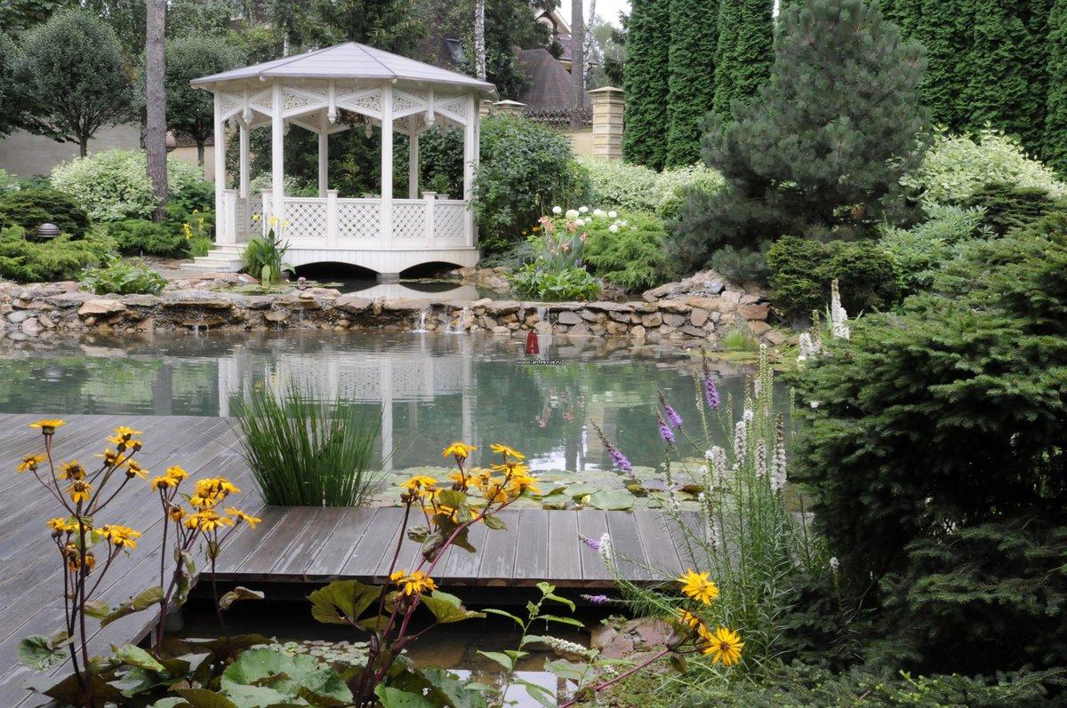 ягоды картинки красивого сада с беседкой симптомы