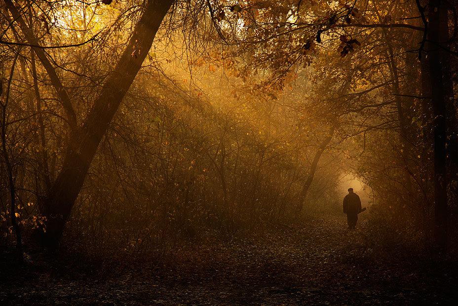 Человек, уÑодящий в осенний туманный лес.