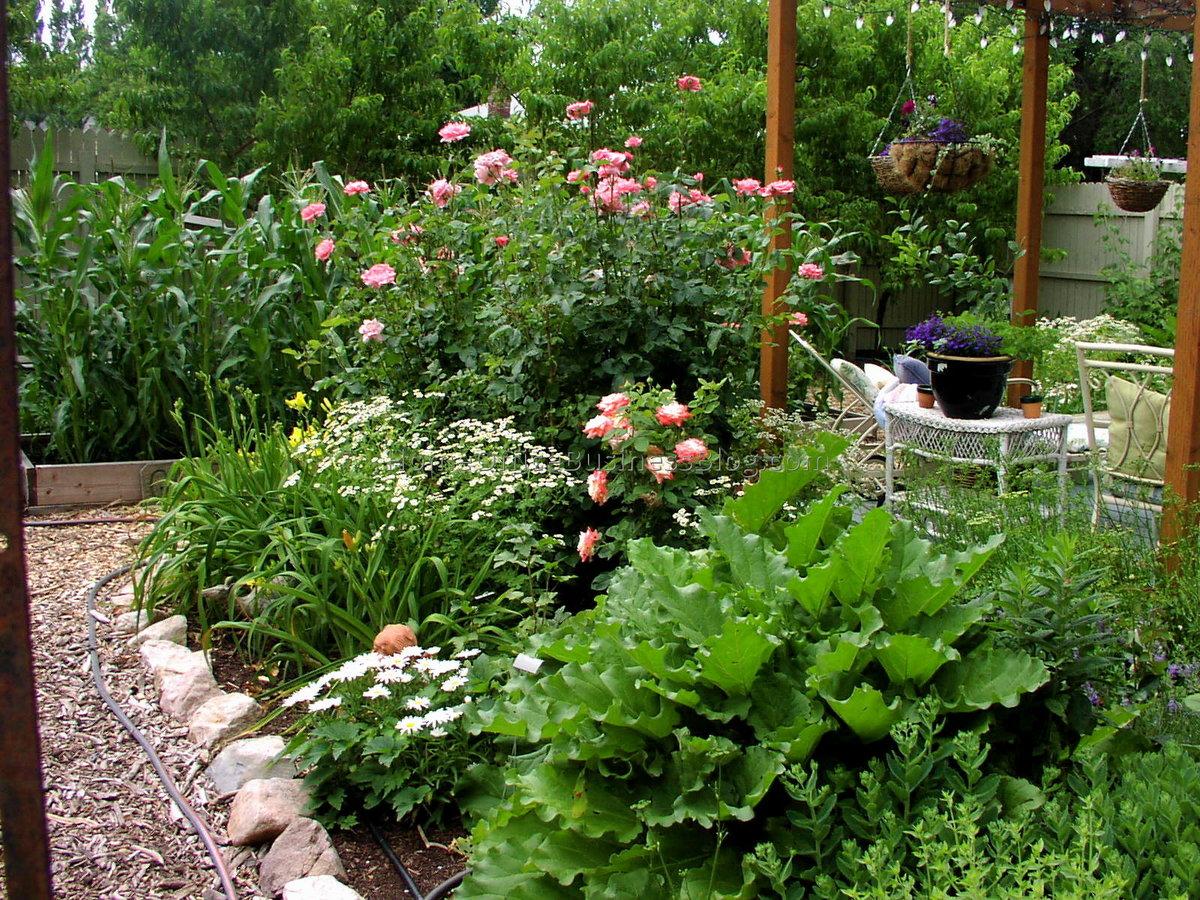 написала, красивый сад для ленивых фото старинке, указываем все